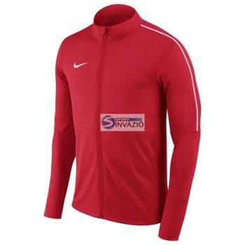 Nike Dry Park 18 Junior AA2071-657 futball jersey